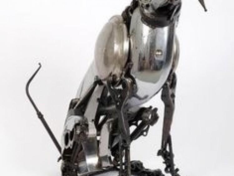 Robothond iets voor jou?
